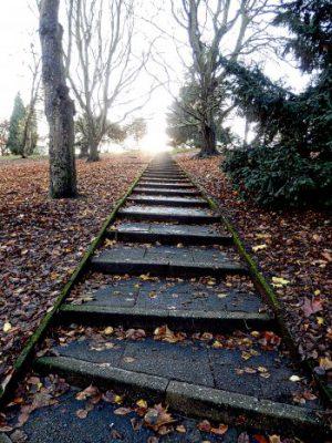 ¿Qué es la fe? Fotografía de unas escaleras que discurren por lo que parece un parque