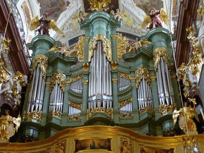 Órgano (instrumento de viento)