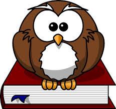 Dibujo de buho posado encima de un libro