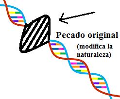 Dibujo que representa un gen modificado por el pecado original. Es un ejemplo para que se vea gráficamente cómo el pecado original modifica la naturaleza de todo hombre. Esto no tiene nada que ver con la culpa.