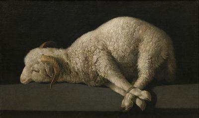 Cordero muerto. Cuadro de Francisco de Zurbarán