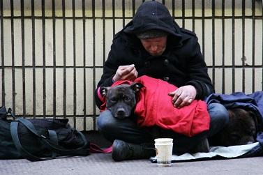 IV Jornada mundial de los pobres. Fotografía de un mendigo con un perro. Foto de Nick Fewings en Unsplash